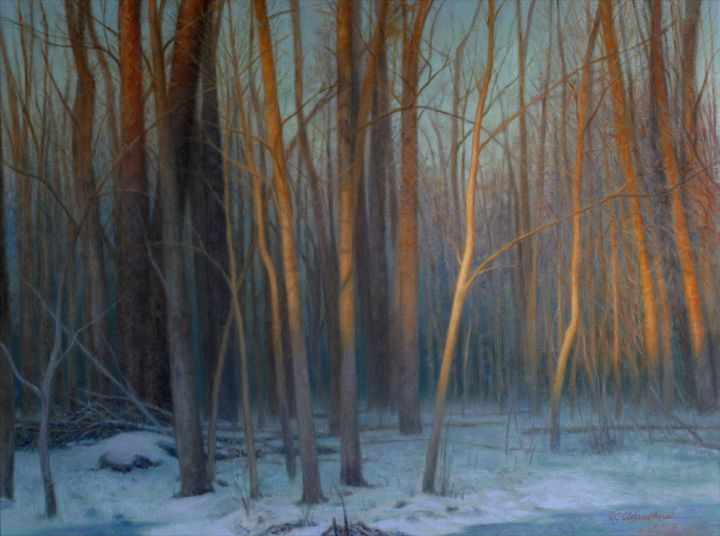 The peace of the woods in winter; a soft whisper, but so beautiful! 'Solstice'