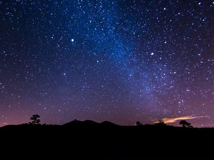 夜景×プラネタリウム!六本木ヒルズ展望台「星空のイルミネーション」開催 | RETRIP