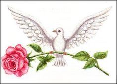 dove carrying rose - Google Search