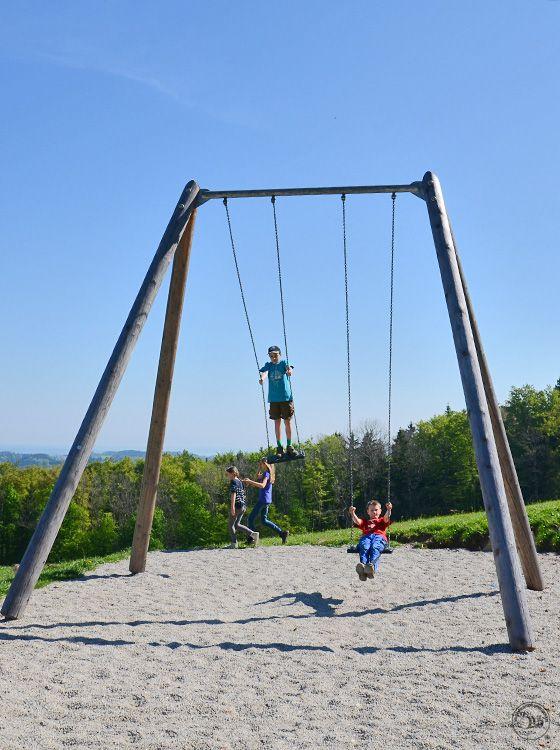 Richter Spielgeräte: Image examples swinging