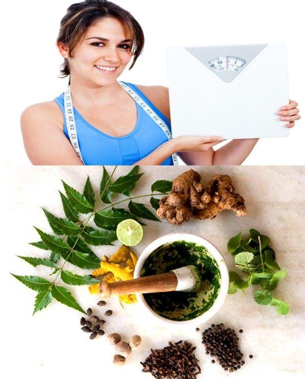 Weight Loss Pill: Chinese Medicine Weight Loss Herbs
