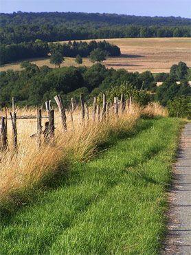 CAMPAGNE-IMAGE_Souvent , petit j'aimais pique-nique à la campagne, avec ma nappe vichy, comme mon visuel