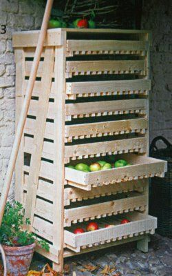 Pallet drawers for root cellar storage.