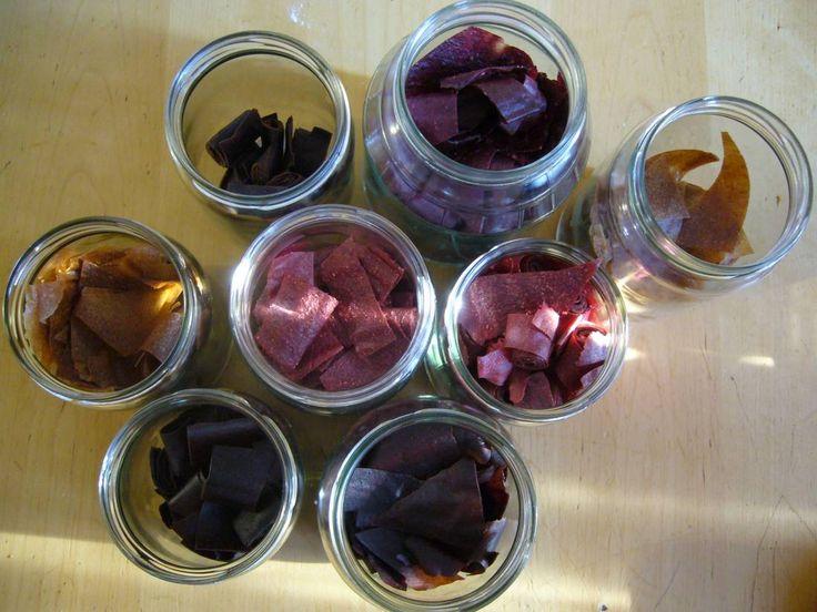 verschiedene Fruchtleder Rezepte