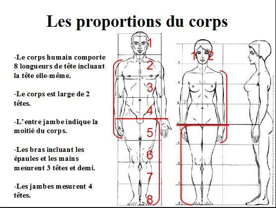 Dessiner ou peindre le corps humain – Les proportions – Partie n° 2 / 5                                                                                                                                                                                 Plus