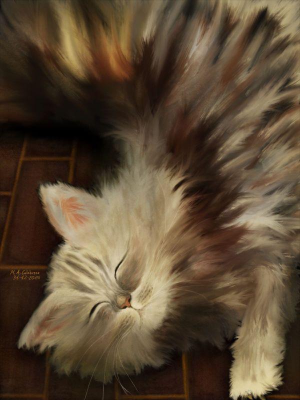Gatto. cat. - Limited Edition Fine Art Print by Maria antonietta  Calabrese on thepixeler.