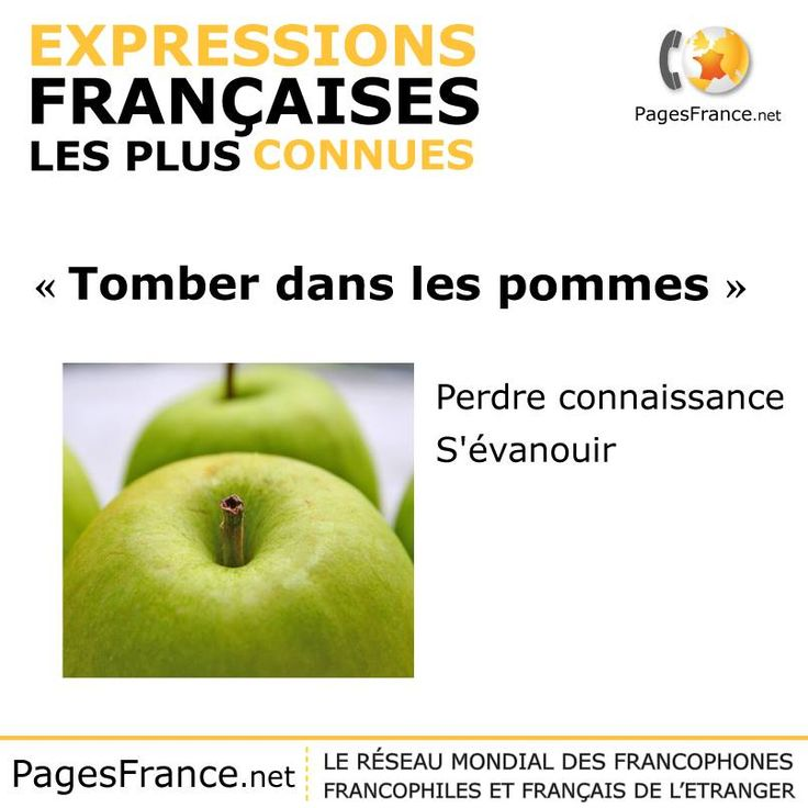 When pigs fly... Les poules auront des dents ! Join us with Thora Van Male on Saturday 22nd March at 2pm to discover French Idioms and their English equivalents..  For more information: http://alliance-cam.co.uk/talk-in-english-by-thora-van-male-the-author-of-french-idioms-and-their-english-equivalents/