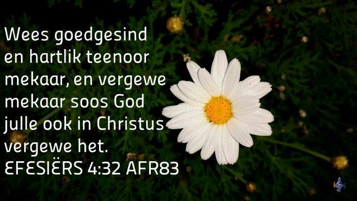 EFÉSIËRS 4:32 Maar wees vriendelik en vol ontferming teenoor mekaar; vergeef mekaar soos God ook in Christus julle vergewe het.