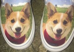 You Can Now Customise Your Vans, So Of Course People Are Choosing To Feature Their Dogs