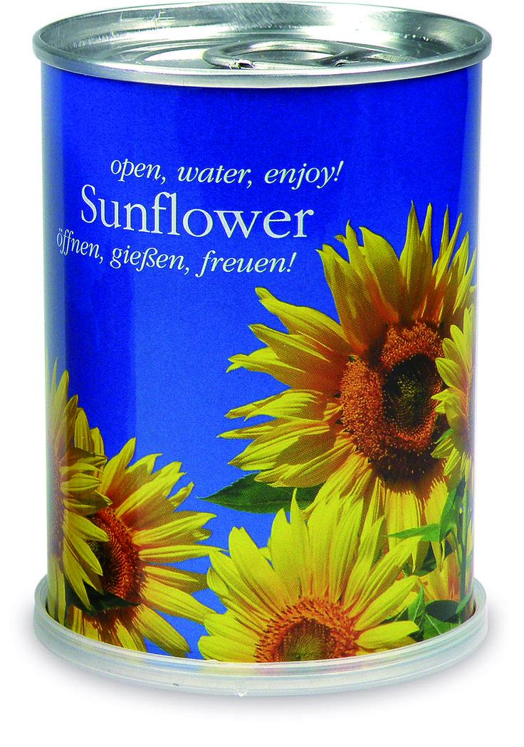 """MacFlowers """"Sonnenblume"""". Die kleine Blumenwiese auf der Fensterbank: Sonnenblumen aus der Dose bringen die gute Laune ins Haus. Und dies denkbar unkompliziert! Samen einpflanzen, Erde umgraben - das Prozedere können sich Hobbygärtner nun sparen. Einfach die Dose öffnen, gießen, warten und sich schlussendlich … freuen. MacFlowers sind übrigens das perfekte Mitbringsel."""