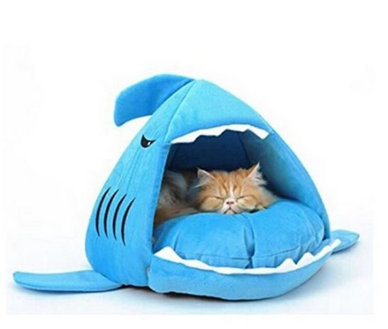 This cute cat bed makes it look like your kitty is napping in the mouth of a tiny blue shark