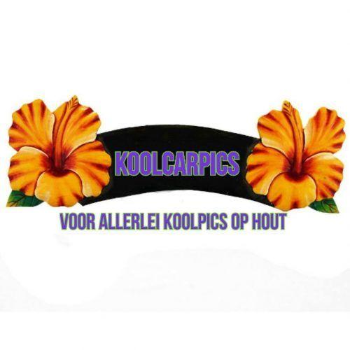 Koolcarpics afdrukken van foto`s en teksten op hout en canvas
