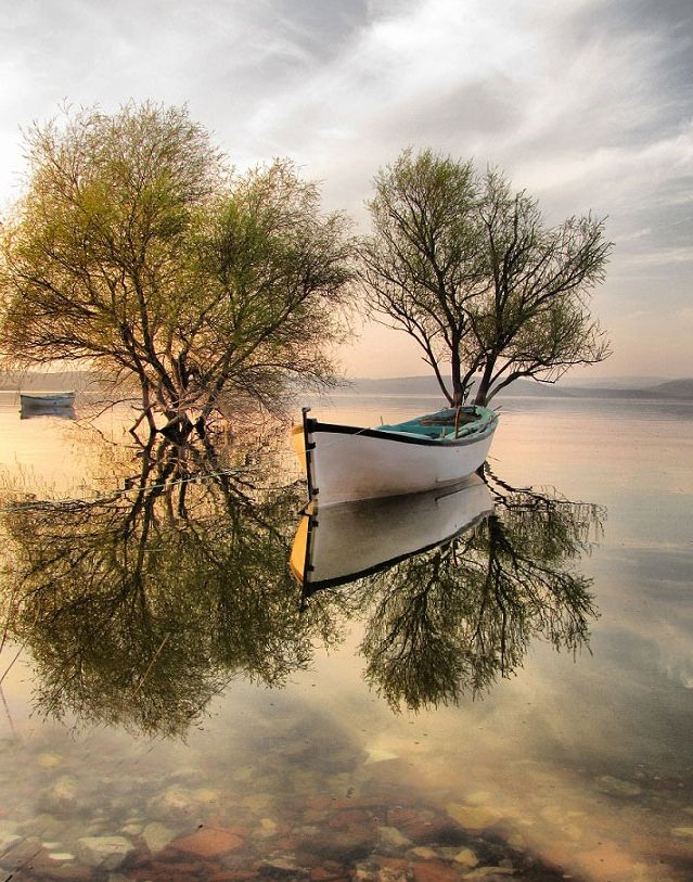 Serenity...: Photos, Water Reflection, Mirrorimage, Boats, Beautiful, Lakes, Trees, Mirror Image, Places