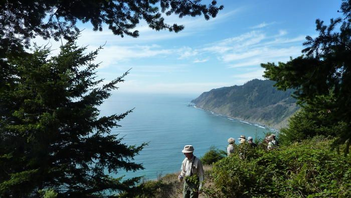 Views from the newly opened Peter Douglas Coastal Trail in the Lost Coast s