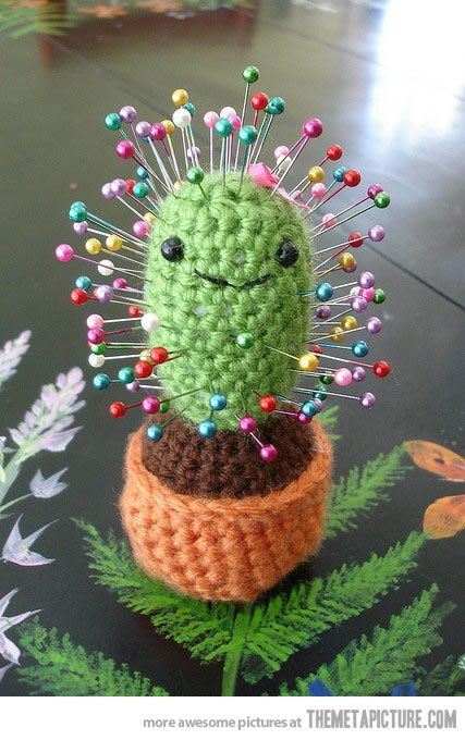 Cactus pin cushion…