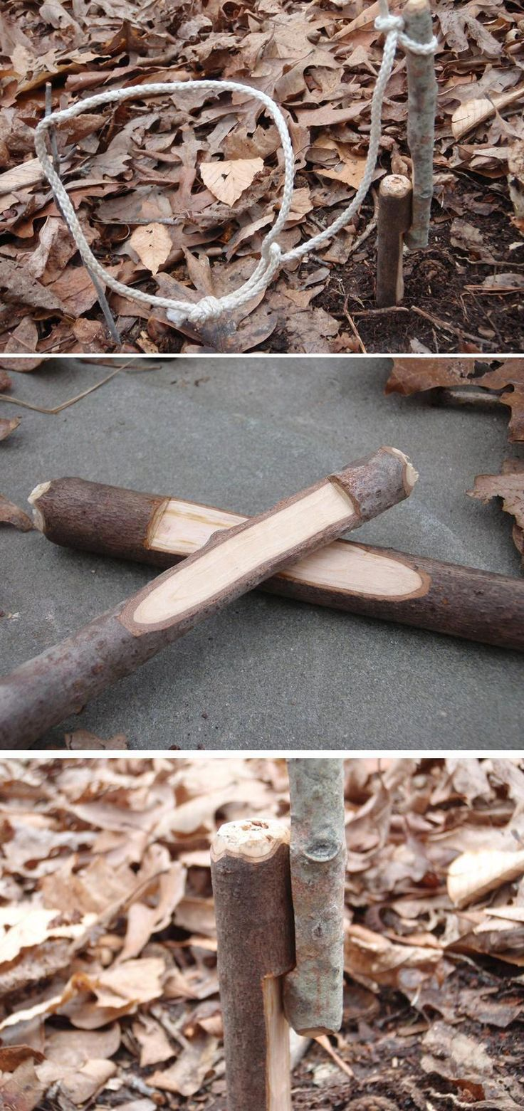 How to Build a Trap: 15 Best Survival Traps | Survival skills every man should k…