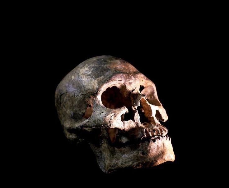 Makabre Begräbnisriten: Zerhackt, gemahlen, verkohlt - SPIEGEL ONLINE - Wissenschaft