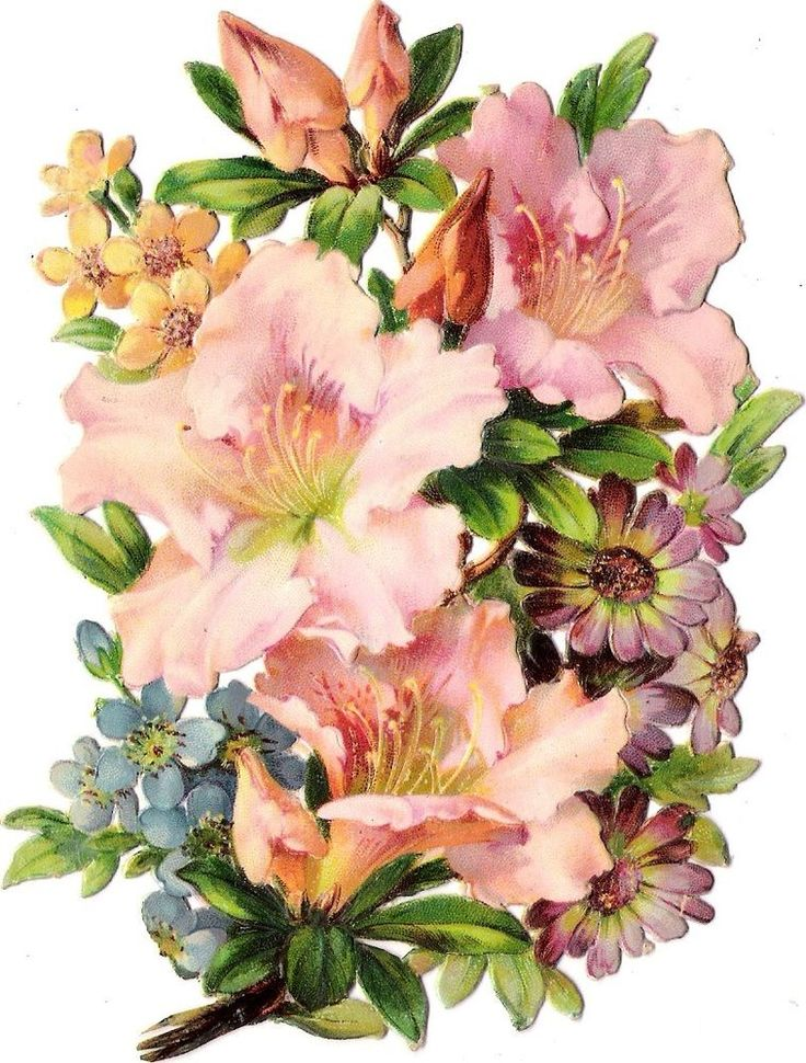 Oblaten Glanzbild scrap die cut chromo Blumen Strauß 13,5 cm Blüten blossom