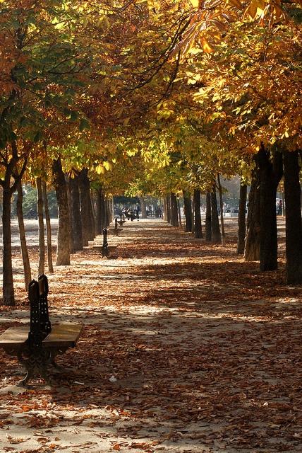 """Parque del Retiro - Otoño"" by Viviendo Madrid"