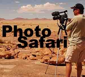Photos of Africa: HIGH DEFINITION STOCK FOOTAGE