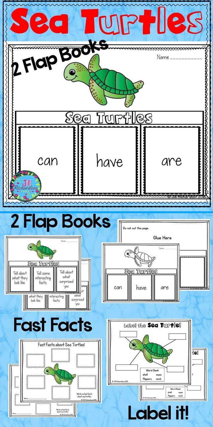 Have your children research sea turtles! This resource includes four ways for your children to share what they have learned about sea turtles in writing. Two Sea Turtle Flap Book Choices – Pick your favorite to use! (color and black and white) Sea Turtles: can, have, are Sea Turtles: Tell about what they look like, Tell some interesting facts, Tell about what surprised you. Sea Turtles Fast Facts (color and black and white) Label the Sea Turtle