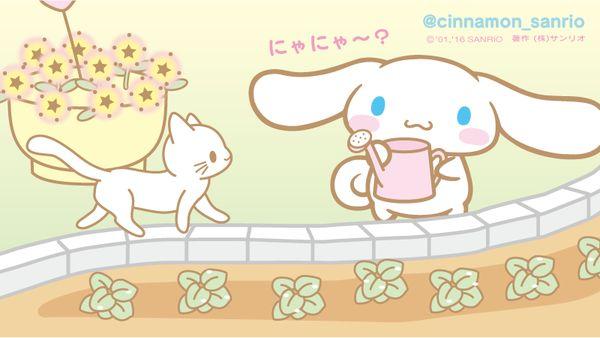 シナモン【公式】 (@cinnamon_sanrio) | ทวิตเตอร์