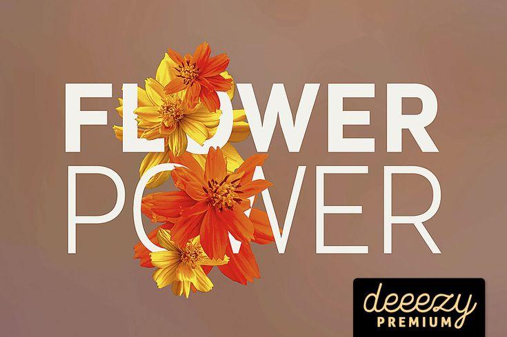 flower-power-deeezy