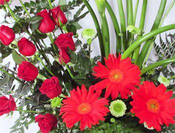 Rosas y Gerberas Marea Roja   Florerias DF   Arreglos Florales   Flores a domicilio   Floristeria  