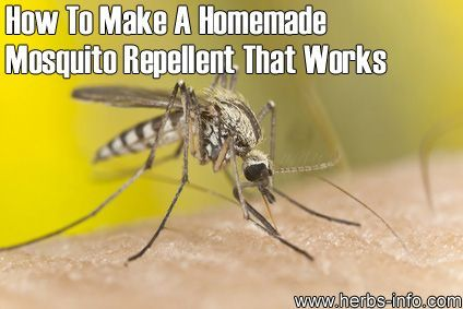 How to Make Homemade Insect Repellent