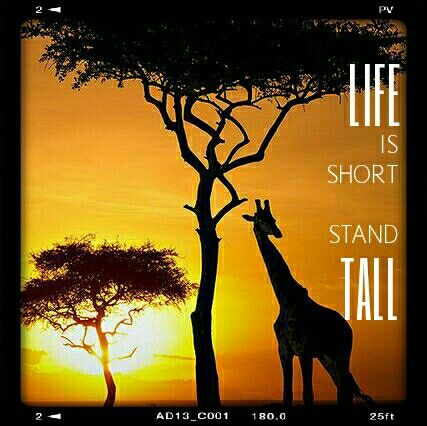 LIFE IS SHORT STAND TALL