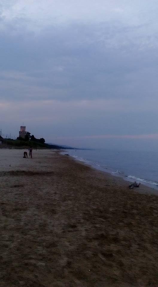 Dove siamo amici??? Siamo nella meravigliosa spiaggia di fronte all'#internationalcamping #torredicerrano !!!  Un mare di natura ci circonda.... con tante specie animali e vegetali del nostro bellissimo parco naturale !!! e di sera è ancora più affascinante !!!
