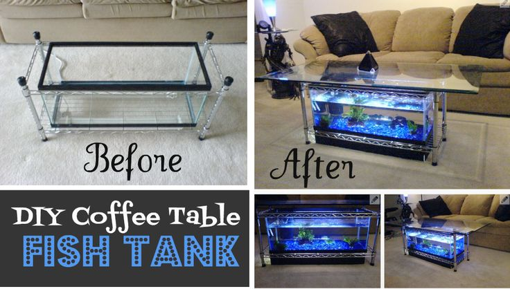DIY Coffee Table Aquarium   TheWHOot