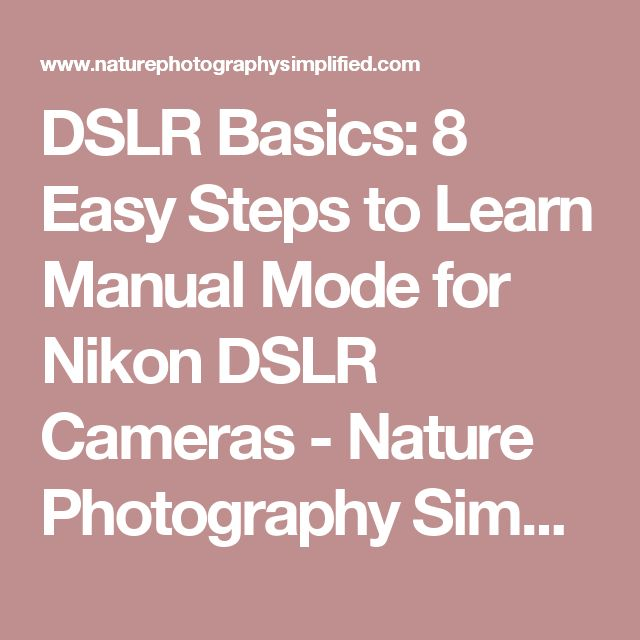 DSLR Basics: 8 Easy Steps to Learn Manual Mode for Nikon DSLR Cameras - Nature Photography Simplified