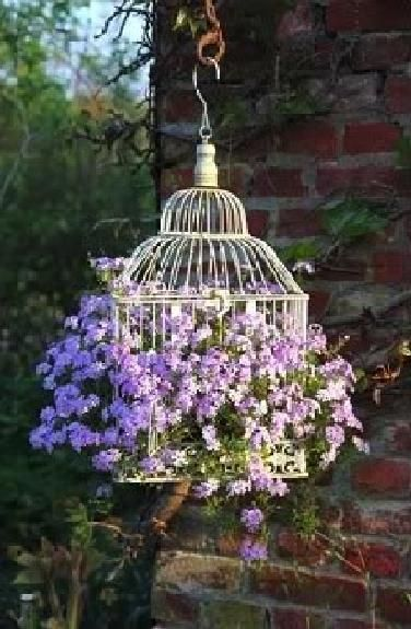 "bird cage planted with an abundance of flowers - such a lovely idea. Especially that they are ""jailbreaking"" through the bars is great! :)"