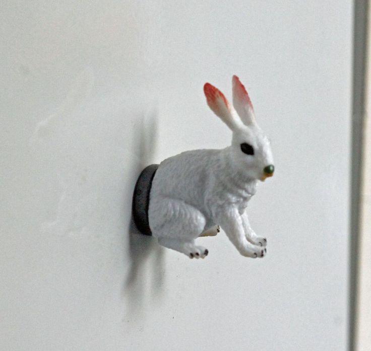 Konijn - Rabbit. Grappig voor op de koelkast of voor op het memobord.- Pimp your fridge or whiteboard. Koelkastmagneten / Fridge magnets / Decoratie / Decoration | From Egypt and Holland with love
