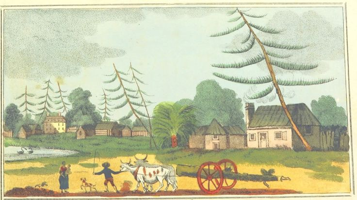 Sydney  by V. Woodthorpe Published Dec. 24, 1802, by M. Jones, Paternoster Row