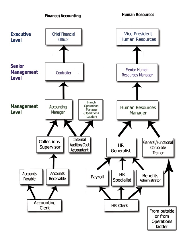 career  ladder for administration and office finance