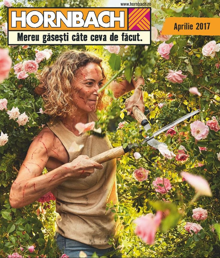 Catalog Hornbach Flori & Gratare Aprilie - Mai 2017! Oferte si recomandari: Lavanda ghiveci 12 cm 11,89 lei; Muscate curgatoare Ville de Paris 15,99 lei