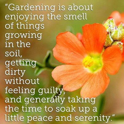 1000 images about garden sayings signs on pinterest gardens garden quotes and garden signs. Black Bedroom Furniture Sets. Home Design Ideas