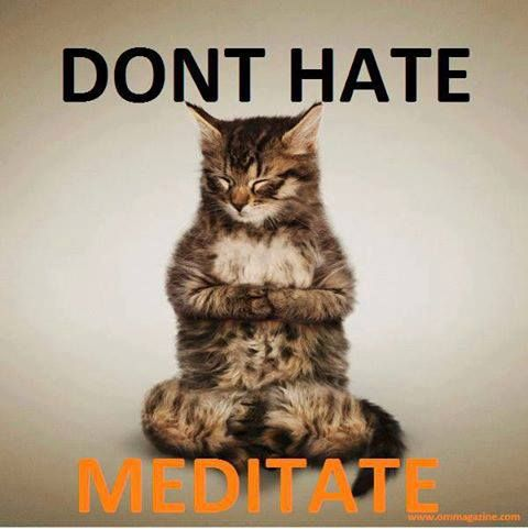 49 best images about yoga humor on pinterest  yoga poses