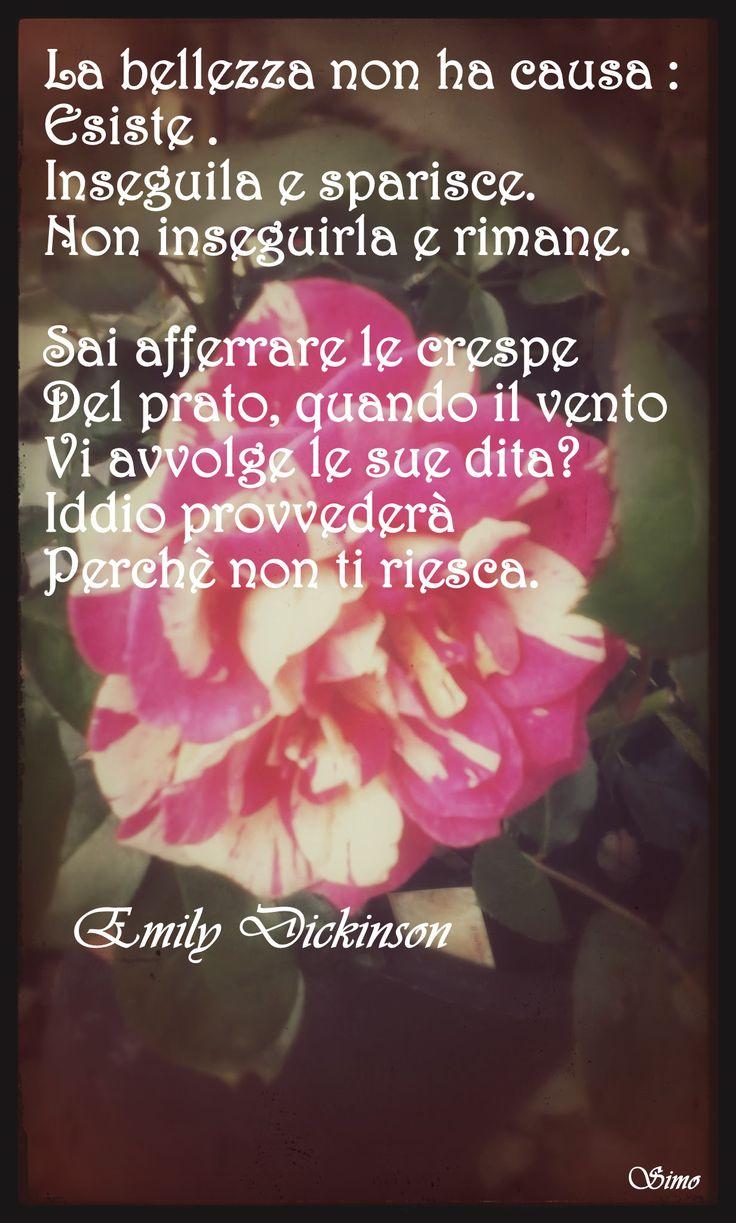 Poesie -Emily Dickinson- La bellezza non ha causa.