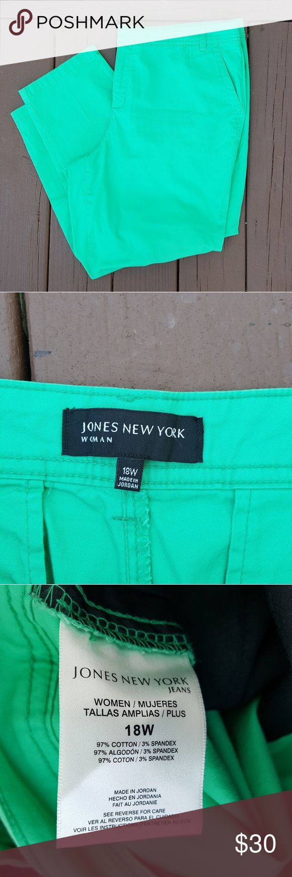 PLUS Jones New York mint green trousers Jones New York mint green trousers Beautiful mint green dress pants Excellent condition Jones New York Pants