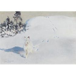 BRUNO LILJEFORS 1860-1939 Winter Hare
