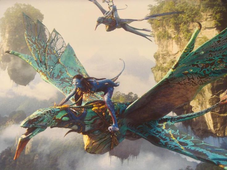 Mountain banshees (Na'vi name: ikran) are large, bird-like aerial predators that are native to Pandora. They are used by the Na'vi for hunting from the air and traveling larger distances. Ikran are also used in battle, where the mount attacks its opponents from the air.