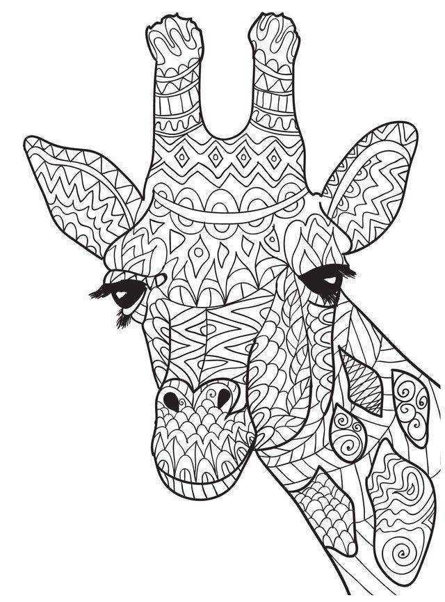 À¥ 20 Mandalas De Animales Para Colorear Meditacion Integral Mandalas Animales Mandalas Para Colorear Animales Mandalas Para Imprimir Gratis Colorear mandalas es una óptima técnica de relajación tanto para niñps como paera adultos que obtienen de esta manera grandes beneficios para su mente. mandalas animales mandalas