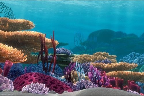 finding nemo stage backdrop | Related Pictures finding nemo fish tank scene smart reviews on cool ...