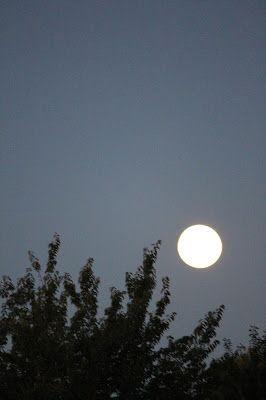 red moon ireland - photo #43