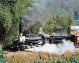 Great Smoky Mountains Railroad     If your near Bryson City, Cherokee, or Dillsboro N.C. you need to check out the Great Smoky Mountains Railroad and the great train rides they offer.