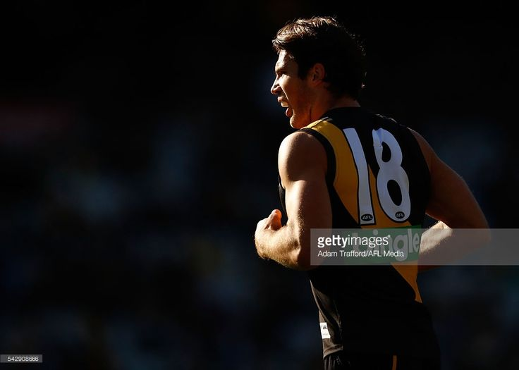 Alex Rance of the Tigers looks on during the 2016 AFL Round 14 match between the Richmond Tigers and the Brisbane Lions at the Melbourne Cricket Ground on June 25, 2016 in Melbourne, Australia.