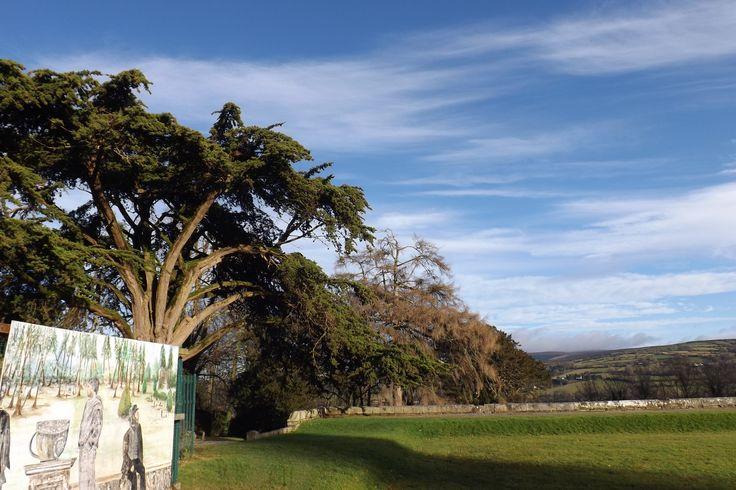 Woodstock gardens, co. Kilkenny